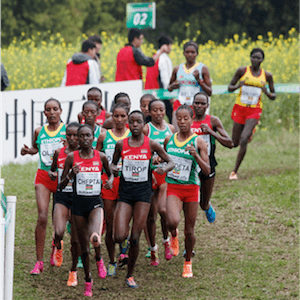 Campeonato Mundial de Cross Country da IAAF em ação